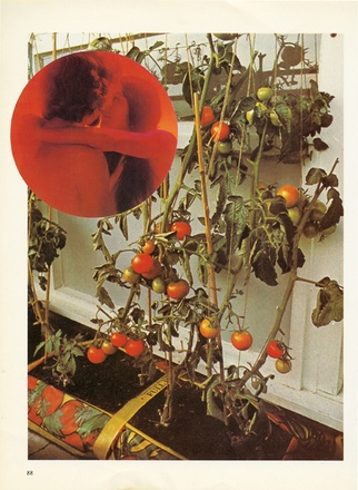 "Wade Guyton, ""The Tomato Lovers"" (2006)"
