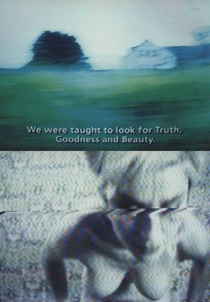 "Pipilotti Rist, ""We Were Taught…"" (2002)"