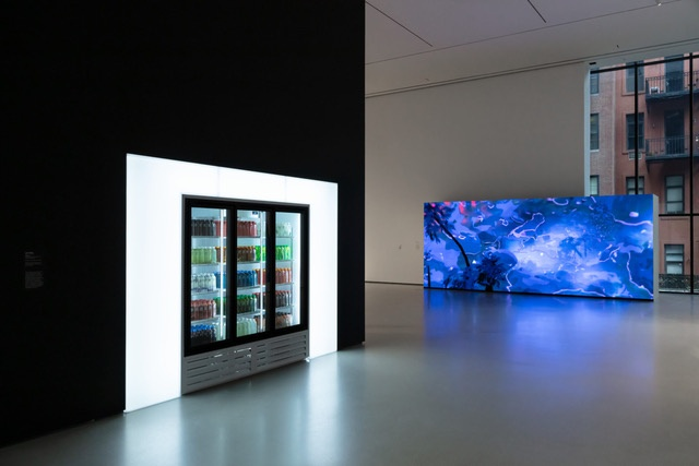 """New Order: Art and Technology in the Twenty-First Century,"" Museum of Modern Art, New York, 2019, installation view"