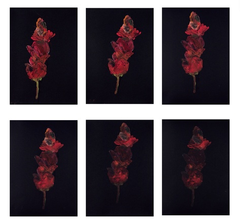 "Ross Bleckner, ""As It Goes"", 2021, Set (6 Unikate)"