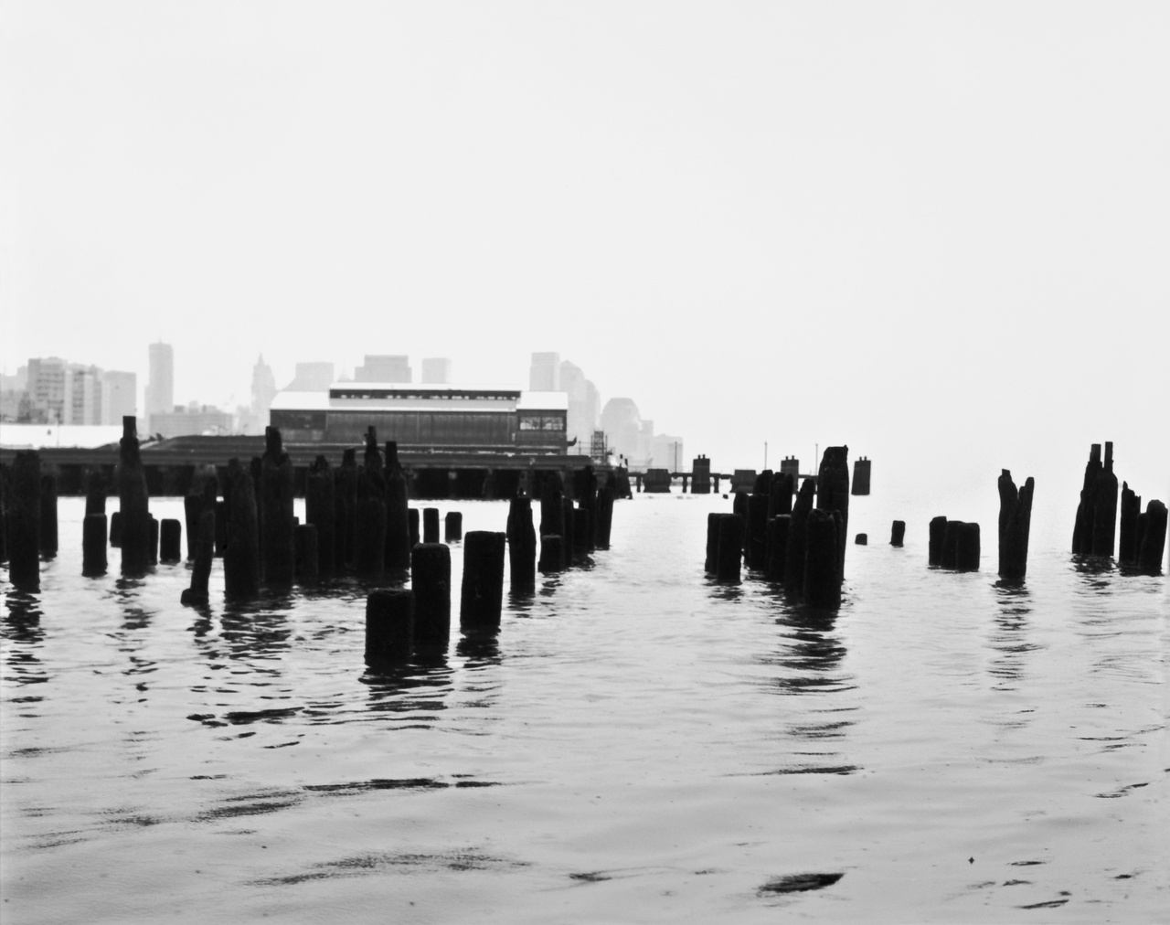 "Emily Roysdon, ""The Piers Untitled (#5)"", 2010"